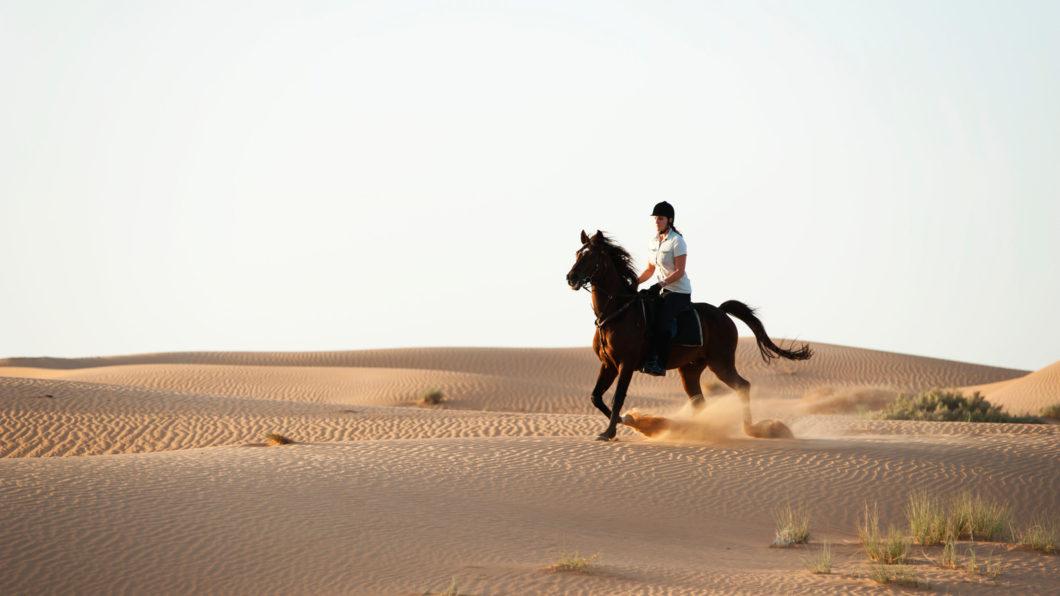 Horse Riding almaha resort desert dubai experience