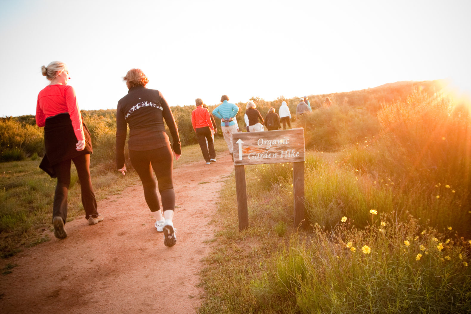 organic-garden-hike-group-activities-natural-environment-experience-sunset-rancho-la-puerta-mexico-fitness-resort-spa-hotel
