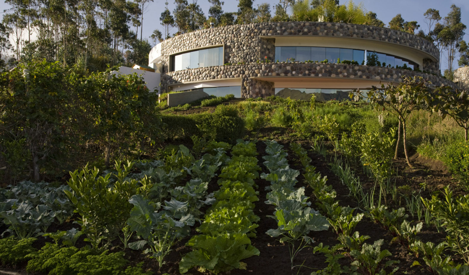 hotel-outside-exterior-own-vegetable-farm-fresh-healthy-cuisine-my-sacha-ji-ecudador