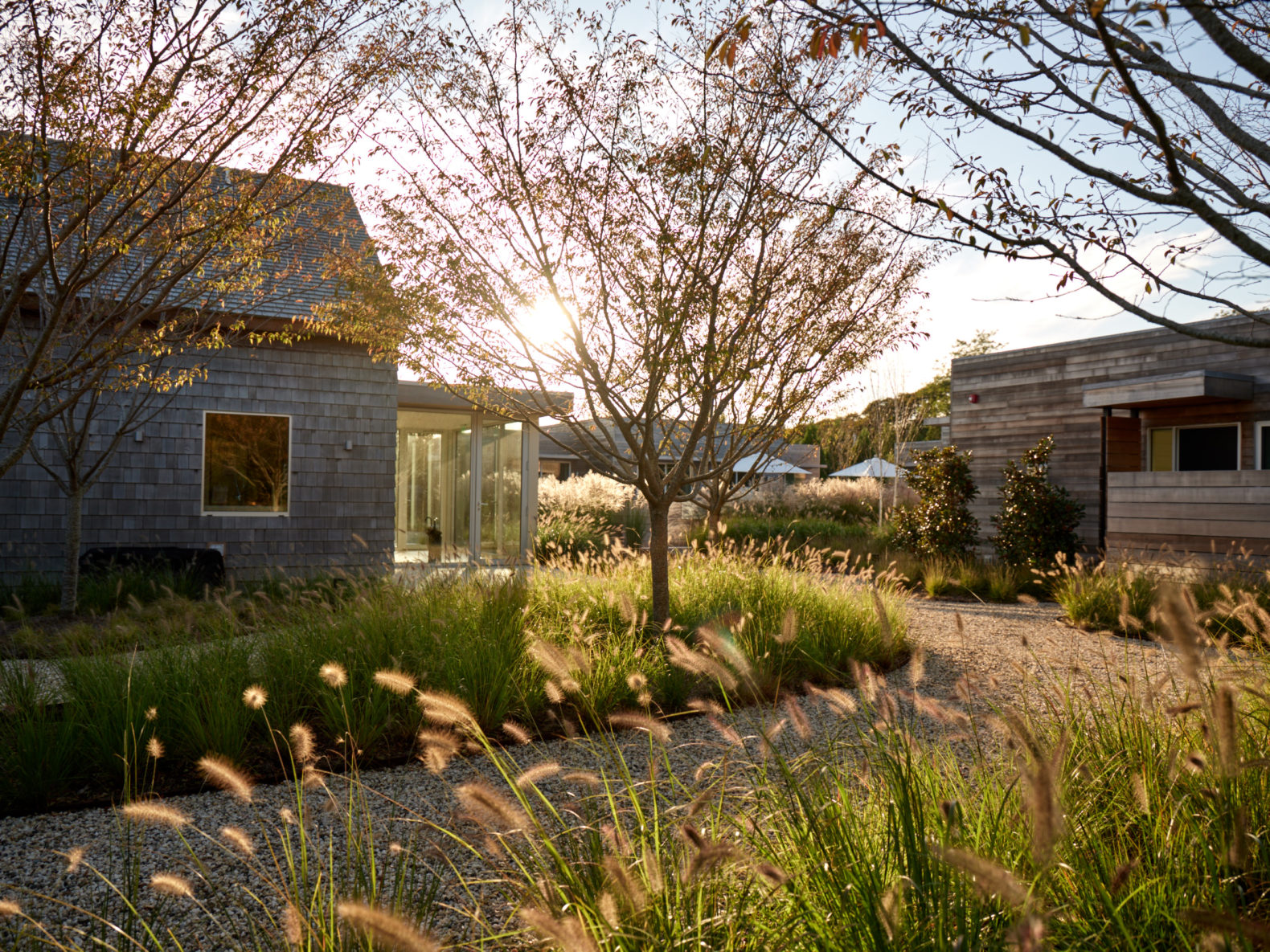 guest-exterior-outdoor-nature-shou-sugi-ban-house-new-york-hamptons-usa