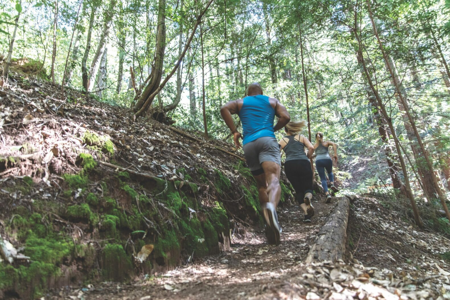 group-running-trail-canyon-ranch-woodside-california-usa-new